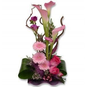 Arrangement Calla