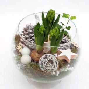 Hyacinthen-arrangement In Glas